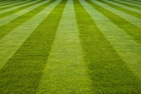 Picture of a well manicured lawn.